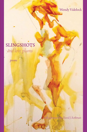 Slingshots and Love Plums by Wendy Videlock